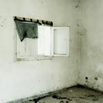 Francesca Loprieno_Oltre le cose_02