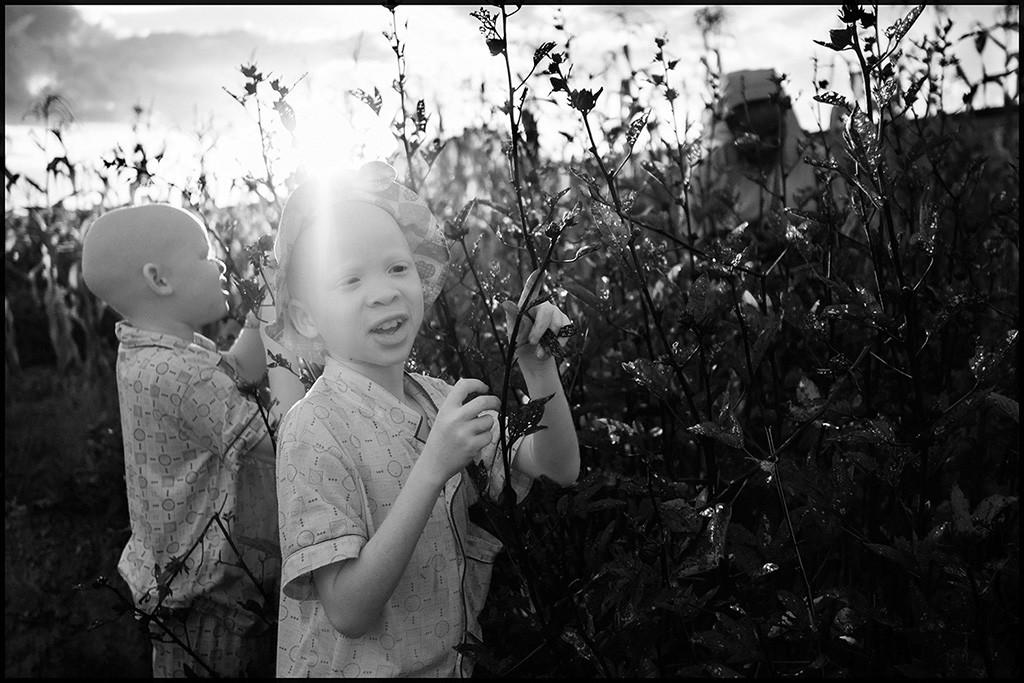 Bambine raccolgono fruttia Tabora, Tanzania 2014
