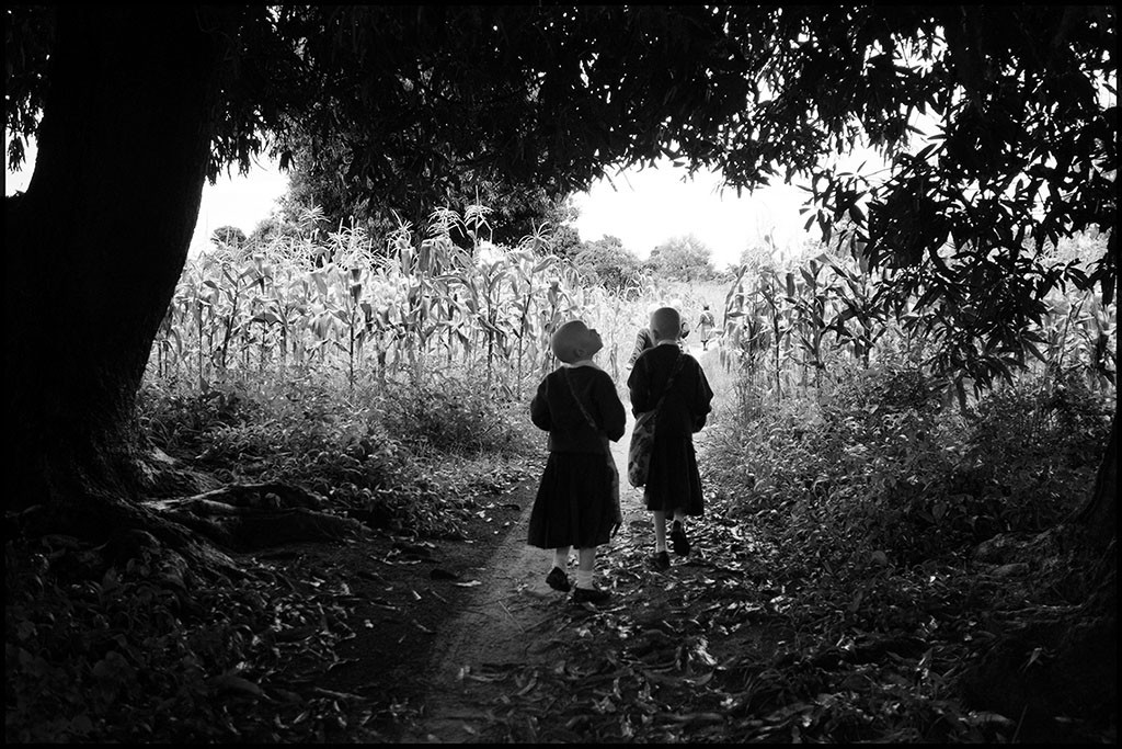 Bambine sul sentiero attraversano il mango, Tabora, Tanzania 2014