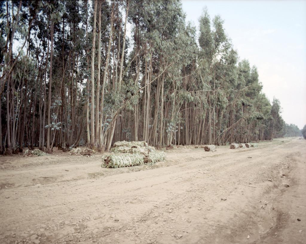 Anna Positano_Addis Abeba_31