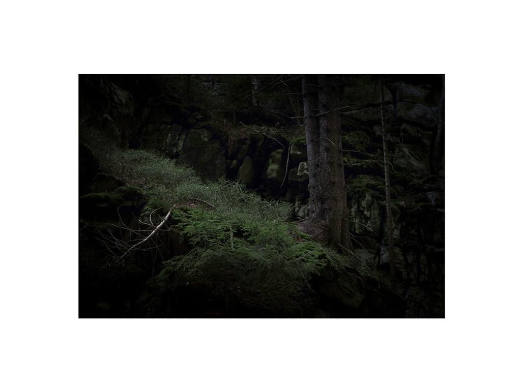 wood_16 12